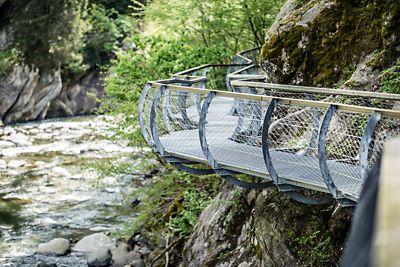 Kräuterreise in den Alpen. Permakultur